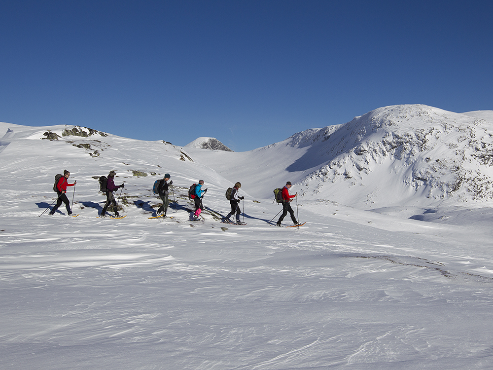 Fjord Snowshoeing week. Photo: Thomas Bickhardt